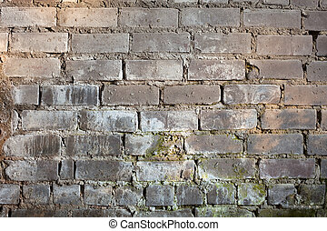Background with old grunge brick wall