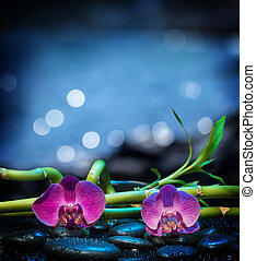 Background with orchids stone