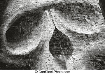 Background with pattern of a skull - Closeup of old concrete...