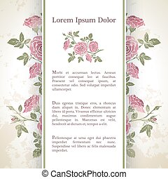 Background with rose flowers.