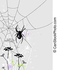 Background with spider - Grunge background with spider web...
