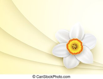 Background with spring flower
