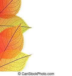 Background with stylize autumn leav