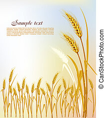 Background with wheat
