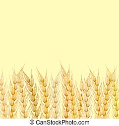 Background with wheat spikelets, vector illustration.