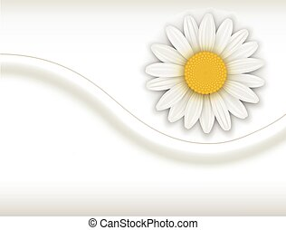 Background with white flower