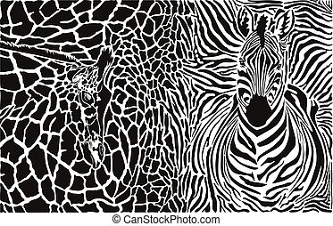 Background with zebra and giraffe
