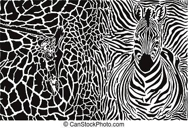 Background with zebra and giraffe