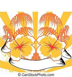 background4, hawaiianer