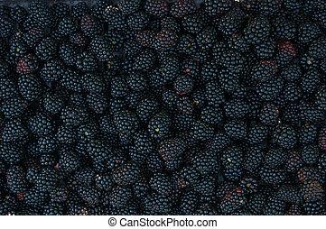 Backgrounds of blackberries