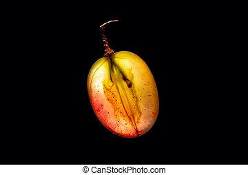 Backlit Grape Slice