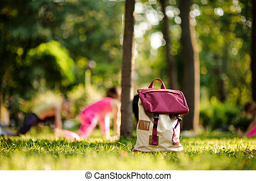 Backpack on grass in a green park on summer day