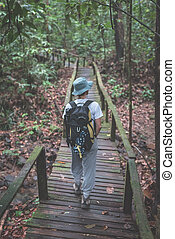Backpacker exploring the majestic jungle of Kubah National ...
