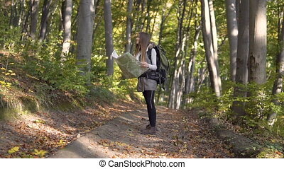 Backpacker Looks at Map in Wood