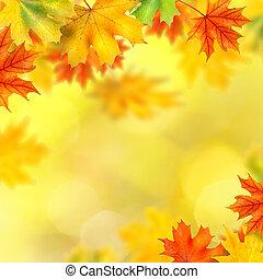 backround, con, otoño sale