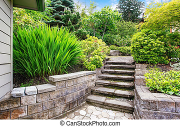 backyard., コンクリート, 光景, 階段, 庭
