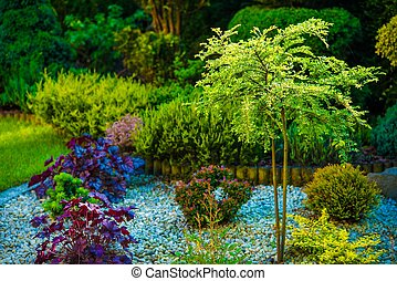 Backyard Garden Closeup
