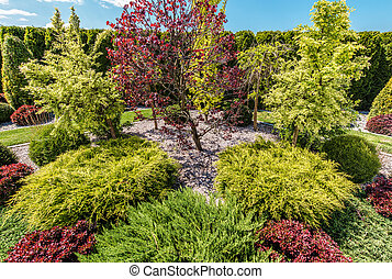 Backyard Garden Full of Colorful Decorative Trees