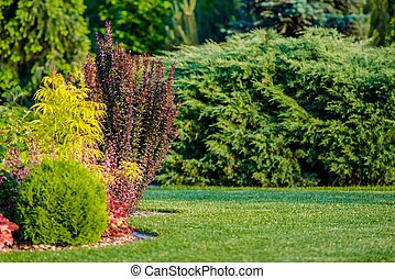 Backyard Garden Place