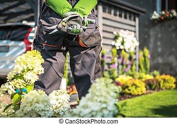 Backyard Garden Work