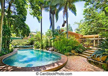 Backyard pool nestled away amongst palms and ferns