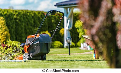 Backyard Summer Maintenance