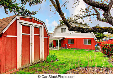 Backyard with green lawn and red shed