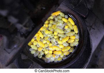 baco seta, processo, bozzoli, giallo, vaso, fabbricazione, seta