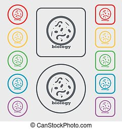 bacteria and virus disease, biology cell under microscope icon sign. symbol on the Round and square buttons with frame. Vector