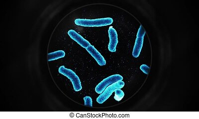 Bacteria Under a Microscope - Blue