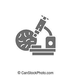 Bacteria under the microscope, probiotics grey icon.