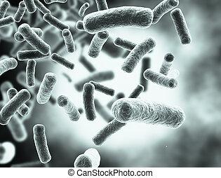 bacterias, células