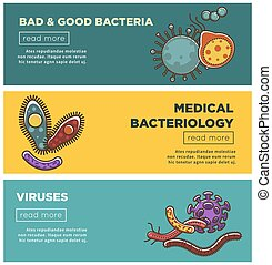 Bad and good bacteria, harmful viruses and medical bacteriology