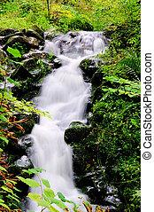 Bad Bertrich waterfall 03
