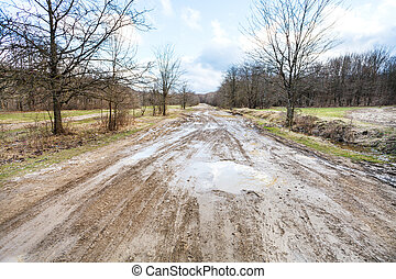 bad country road in early spring day