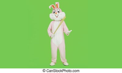 Bad guy or bully in adult easter rabbit bunny life-size suit costume with baseball bat want to fight, kill on green screen, chroma key.