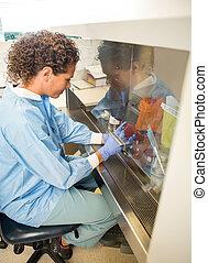 badacz, eksperymentujący, w, laboratorium
