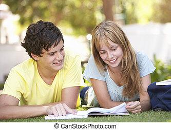 badając, teenage, park, para, student
