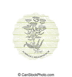 Badge with Yarrow Plant and Wooden Backdrop - Round Badge ...