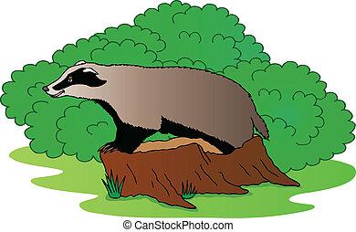 Badger beside bush - vector illustration.