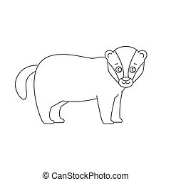 Badger for coloring book