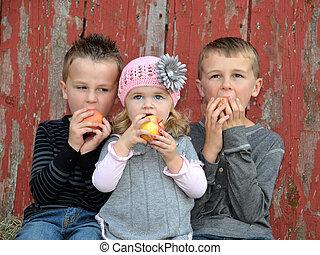 badine manger, pommes