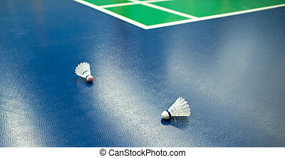 badminton courts with two shuttlecocks