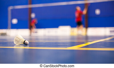 Badminton - badminton courts with two shuttlecocks (shallow...