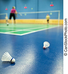 badminton courts with shuttlecocks
