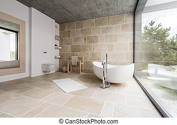 badrum, förbluffande, spatiös