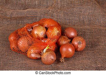 Bag of onions