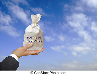 Bag with business insurance