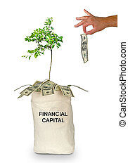 Bag with financial capital