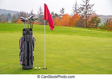 bag with golf clubs on green